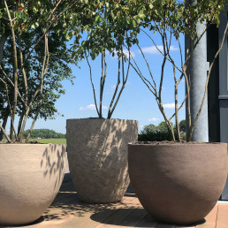 Biesot tuinaanleg tuinstyling vijfhuizen hoofddorp haarlem potten atelier vierkant