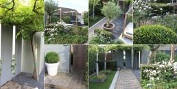Architect tuin door Biesot